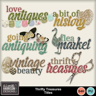 Aimeeh_thriftytreasures_ti