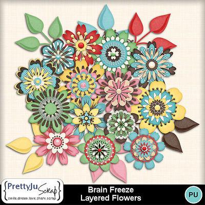 Brain_freeze_fl