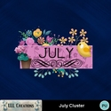 July_cluster-01_small