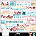Sd_hawaii_wb_small