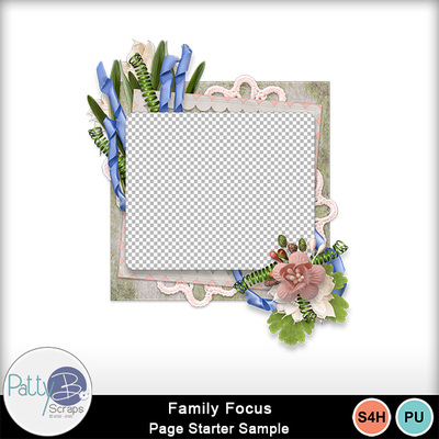 Pbs_family_focus_cl_sample