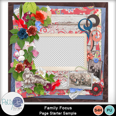 Pbs_family_focus_qp_sample
