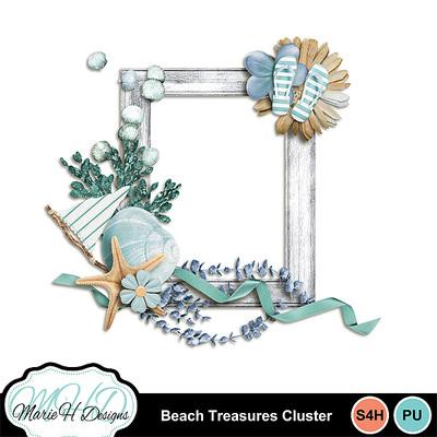 Beach_treasures_cluster_01