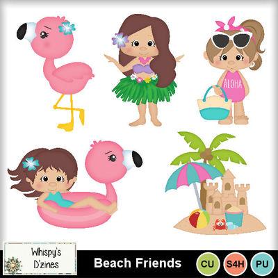 Wdcubeachfriendscapv