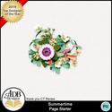 Adbdesigns_summertime_gift_cl05_small
