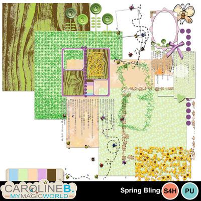 Spring-bling_extras