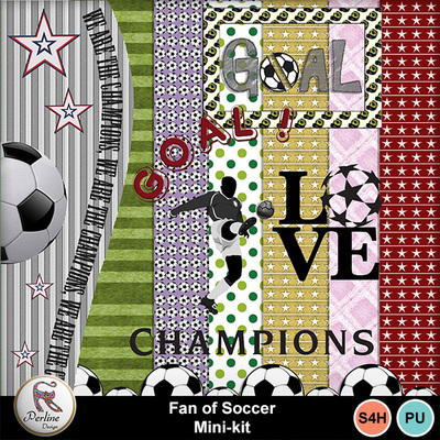 Pv_fan_of_soccer