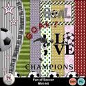 Pv_fan_of_soccer_small