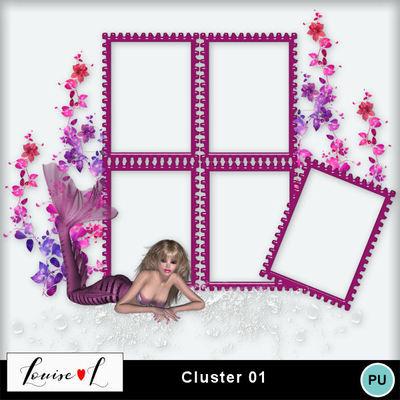 Louisel_cluster01