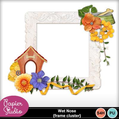 Wet_nose_frame_cluster_pv