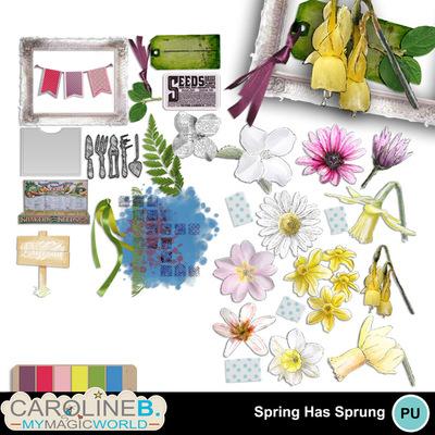 Spring-has-sprung-el_1