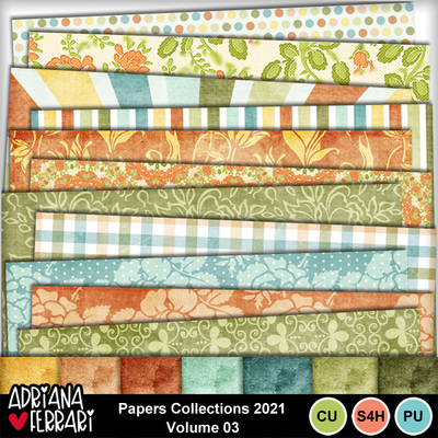 Prev-paperscollections2021-vol3-1