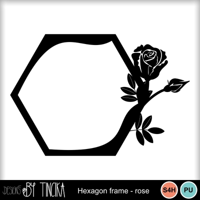 Hexagon_frame_mms