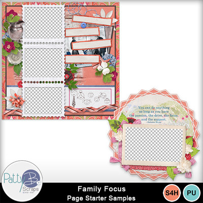 Pbs_family_focus_samples
