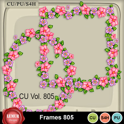 Frames805