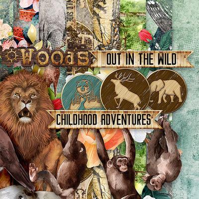 Adventureinforest3