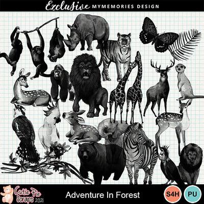 Adventureinforest12