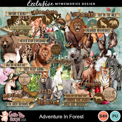 Adventureinforest8
