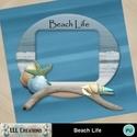 Beach_life-01_small
