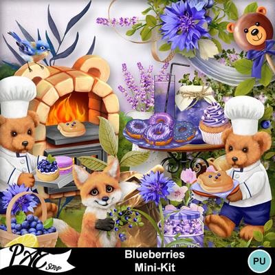 Patsscrap_blueberries_pv_mini_kit