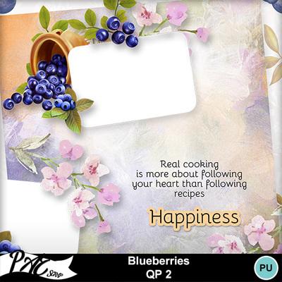 Patsscrap_blueberries_pv_qp2
