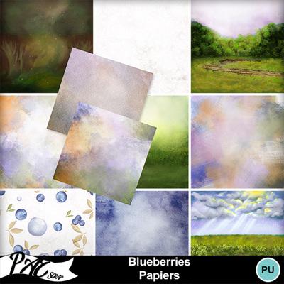 Patsscrap_blueberries_pv_papiers