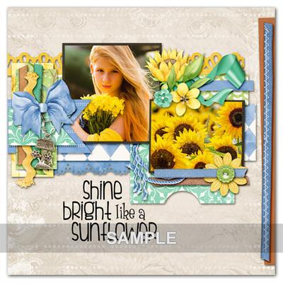 01-sunflowersummer-kathryn