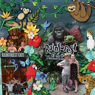 Best-of-amazonia-12