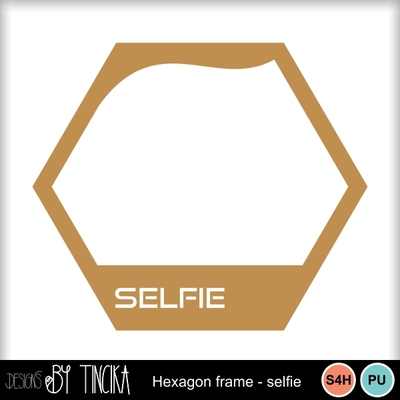 Hexagon_frame_selfie_mms