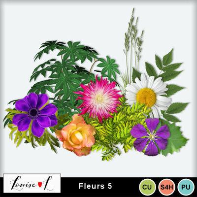 Louisel_cu_fleurs5_preview