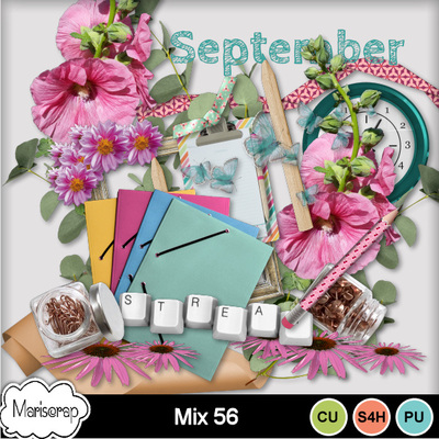Msp_cu_mix56_pvmms