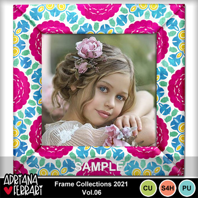 Prev-framecollections2021-6-2