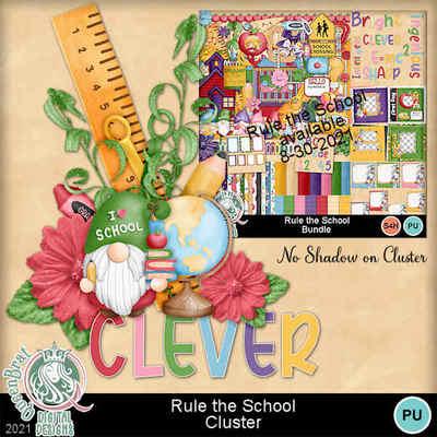 Ruletheschool_cluster1