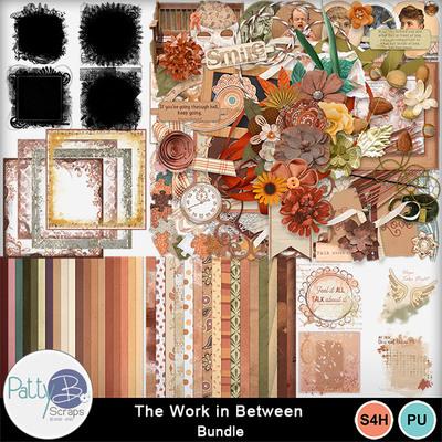 Pbs_work_in_between_bundle