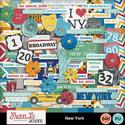 Newyork1_small