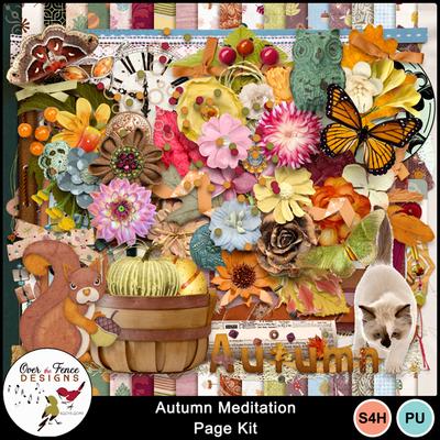 Autumn_meditation_pk