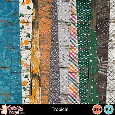 Tropical9