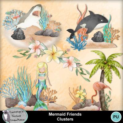 Csc_mermaid_friends_clusters_wi_