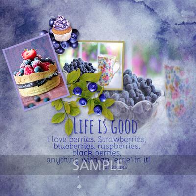 Patsscrap_blueberries_sample2