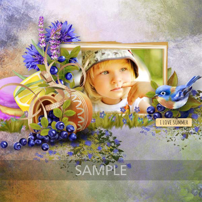 Patsscrap_blueberries_sample5