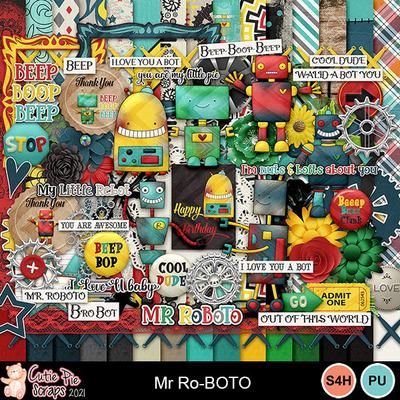 Mrroboto1