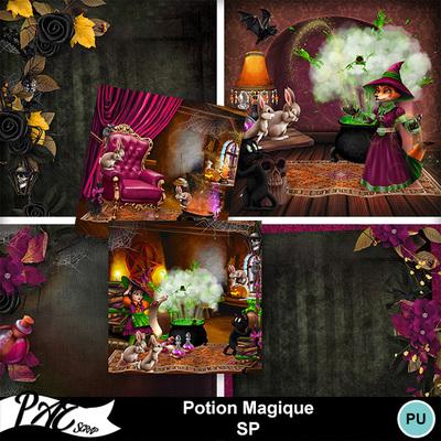 Patsscrap_potion_magique_pv_sp