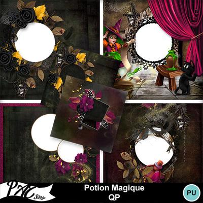 Patsscrap_potion_magique_pv_qp
