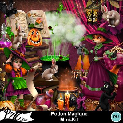 Patsscrap_potion_magique_pv_mini_kit