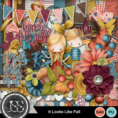 It_looks_a_lot_like_fall_kit