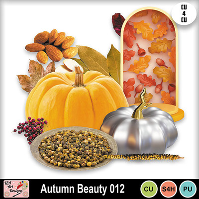 Autumn_beauty_012_preview