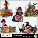 Louisel_little_witch_clusters1_prv_small