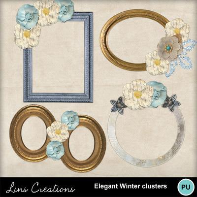 Elegantwinterclusters