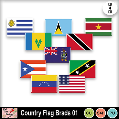 Country_flag_brads_01_preview