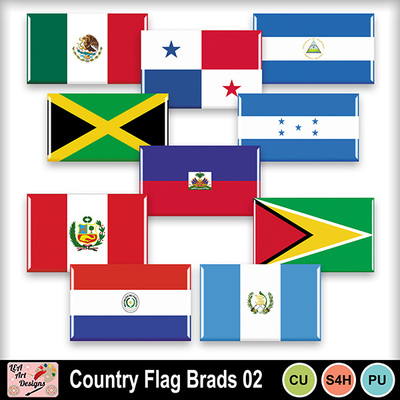 Country_flag_brads_02_preview